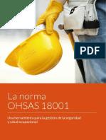 ebook-ohsas-18001-gestion-seguridad-salud-ocupacional.pdf