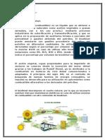 El Ciclo Del Biodiésel (1)
