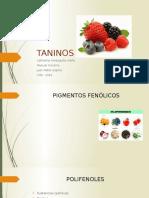 Presentación Taninos.pptx