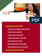 SI SDM.pdf