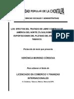 protocolo roberto tesis.docx