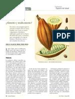 Propiedades Del Grano de Cacao