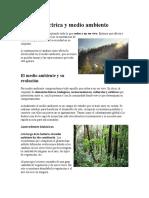 Energía Eléctrica y Medio Ambiente.docx