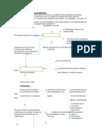 Pediatria 15.- Ictericia e Hiperbilirubinemia