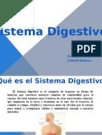 Presentación1 Digestion