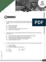 04 BIOLOGIA ELEC Organizacion del sistema nervioso fvjhrfjrujfrII_2016_PRO.pdf