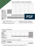 Formato Flujo de Caja a Pesos Constantes y Antes de Impuestos (1)