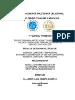 TESIS ZAPATOS 1.pdf