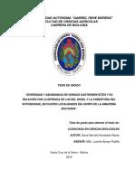 Tesis_Diana_Rocabado.pdf