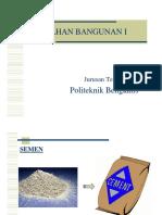 Presentation of BB I (semen ok).pdf