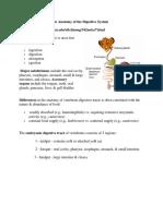CVA Digestive