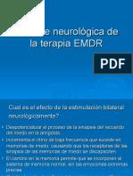 La Base Neurologica de La Terapia EMDR