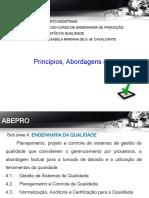 2. Principios e Definicao Da QA