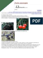 Les Arbustes à Fruits
