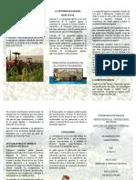 INTRODUCCIÓN Derecho Agrario