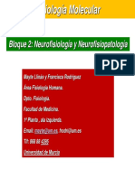 Sistema+NerviosoGeneralidades.pdf