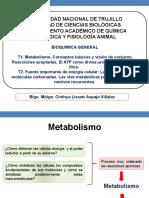 Semana 6. Metabolismo CLAV 2