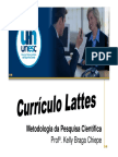 Currículo Lattes.pdf