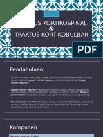 Traktus kortikospinal - kortikobulbar