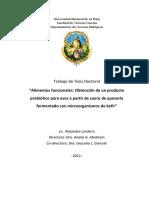 Tesis en PDF Para UNLP Final Reducida