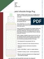 RIPE- Drillable Inflatable Bridge Plug