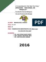 Año De La Consolidación Del Mar De Grau (Autoguardado).docx