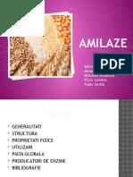 amilaze-1