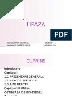 lipaze