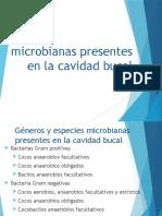 Géneros y Especies Microbianas Presentes en La Cavidad