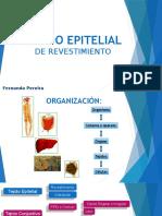 1 - Tejido epitelial.pptx