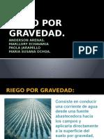 riegosusana-140907160840-phpapp02.pptx