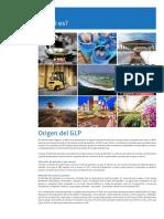 WLPGA-EE-PDF-ES.V1