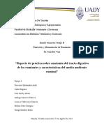 Practica AnatomiaYFisiologia Nutrición