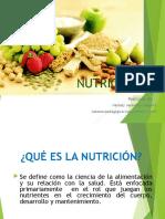 DIAPOSITIVAS NUTRICIÓN