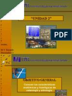 huesosyarticulaciones-090519193229-phpapp01.ppt