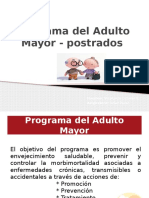 Programa Del Adulto Mayor - Postrados2015