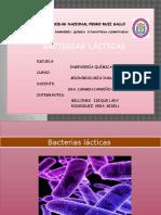 Bacterias Lácticas