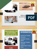 Programa de Auditoria Cta. 12 y 13