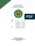 Laporan Praktikum Spektrofotometri Derivatif
