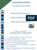 didacticageneraldidacticasespecificas-130710175645-phpapp01