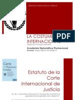 5 DIP - Costumbre Internacional (1)