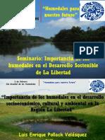 Importancia de Los Humedales en La Región La