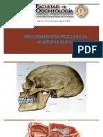 procedimientos preclinico