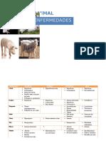 Sanidad Animal Enfermedades
