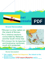 Brunei brief description