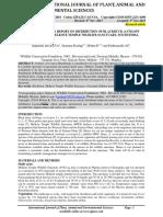 Ijpaes PDF