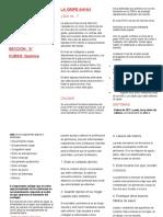 LA GRIPE AH1N1.docx