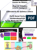 Urea Glomerulonefritis