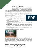 Badak Jawa Satwa Terlangka