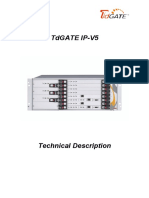 TdGATE IPV5 TechnicalDescription V1.3